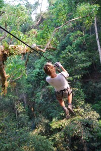 Gibbon Experience (15)