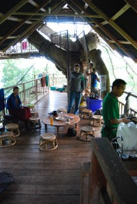 Gibbon Experience (30)