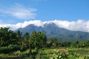 Flores Mount Egon (48)