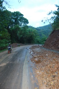 Flores Road (16)