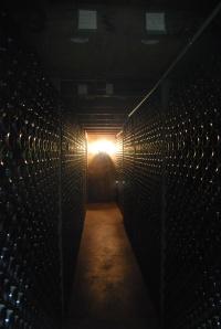 Cellar Door 3
