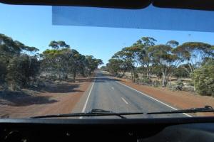 Road (40)