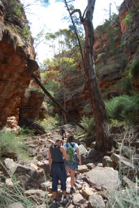 Flinders Ranges (2)