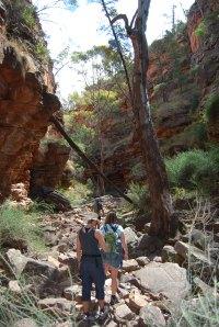 Flinders Ranges (2)