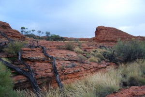 Kings Canyon (10)