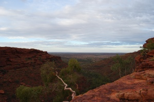 Kings Canyon (11)