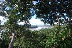 Tambopata (126)