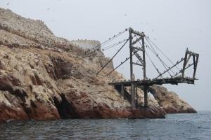 Islas Ballestas (36)