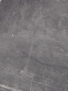 Nazca lines (20)