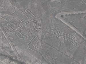 Nazca lines (28)