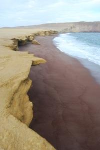 Paracas Reserva Nacional (18)